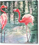 Flamingo Time Canvas Print