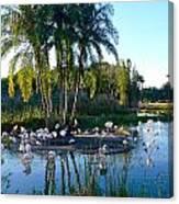Flamingo Watering Hole Canvas Print