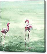 Flamingos In Camargue 02 Canvas Print
