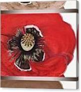 Flanders Poppy Triptych Canvas Print