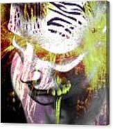 Flashy Frank  Canvas Print