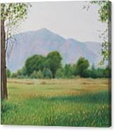 Flatirons From Dry Creek Meadow Canvas Print