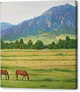 Flatirons From Jay Road Horse Farm Canvas Print