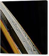 Flax Droplets Canvas Print