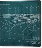 Flesh Fly Wing Blueprint Green Canvas Print