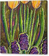Fleurs D' Tulips And Hyacinths Canvas Print