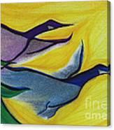 Flight By Jrr Canvas Print