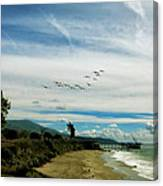 Flight Of Pelicans Canvas Print