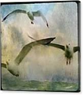 Flight Of The Seagulls Canvas Print