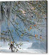 Flint River 29 Canvas Print