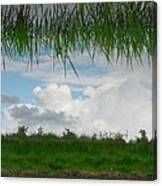 Flipped Reflection Canvas Print
