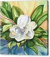 Floating Magnolia Canvas Print