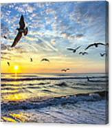 Floating On The Sun Rays Canvas Print