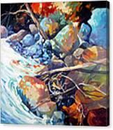 Flood Plain Canvas Print