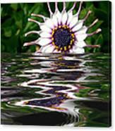Flooded Flower Canvas Print