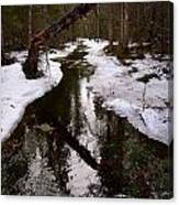 Flooding Forest Canvas Print