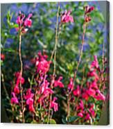 Floral Cameo Canvas Print