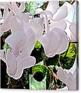 Floral Clouds Canvas Print