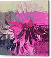 Floral Fiesta - S31at01b Canvas Print
