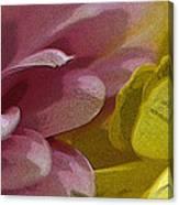Floral Impressions Canvas Print