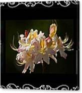 Floral Photomontage 1 Canvas Print