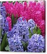Floral Shades 4 Canvas Print