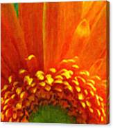 Floral Sunrise - Digital Painting Effect Canvas Print