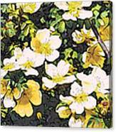 Floral Yellow Canvas Print