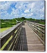 Florida Boardwalk Canvas Print
