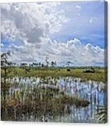 Florida Everglades 0173 Canvas Print