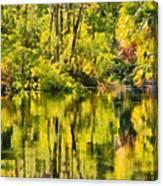Florida Jungle Canvas Print