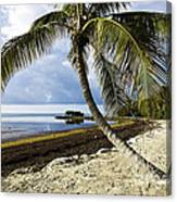 Florida Keys Beach Canvas Print