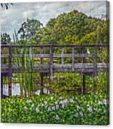 Florida Nature Canvas Print