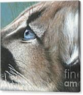 Florida Princess Canvas Print