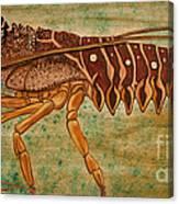 Florida Spiny Lobster Canvas Print