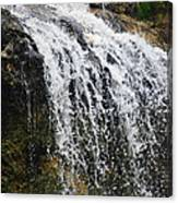 Florida Waterfall Canvas Print