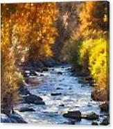 Flow V16 Canvas Print