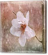 Flower Art - Nature Reminds Us Canvas Print