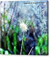 Flower As A  Painting Canvas Print