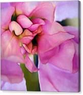 Flower At Twilight Canvas Print