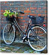 Flower Basket Bicycle Canvas Print