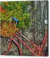Flower Basket On A Bike Canvas Print