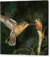Flower Bird Canvas Print