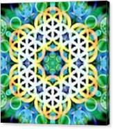 Flower Bubbles Canvas Print