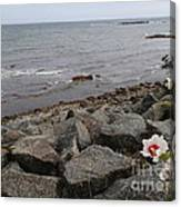 Flower By The Sea Canvas Print