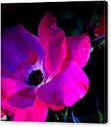 Flower Continuum  Canvas Print