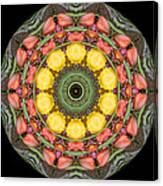 Flower Drum Canvas Print