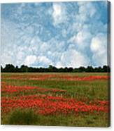 Flower Fields Forever Canvas Print
