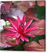 Flower Garden 67 Canvas Print