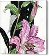 Flower Lily 02 Elena Yakubovich Canvas Print